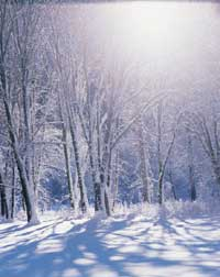 Living in harmony with Nature - Winter